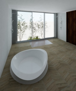 Master bathroom with hidden plunge pool